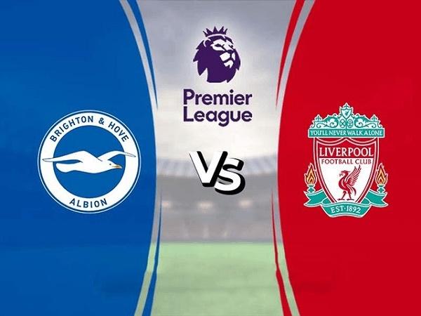 Soi kèo Brighton vs Liverpool - 19h30, 28/11, Ngoại Hạng Anh